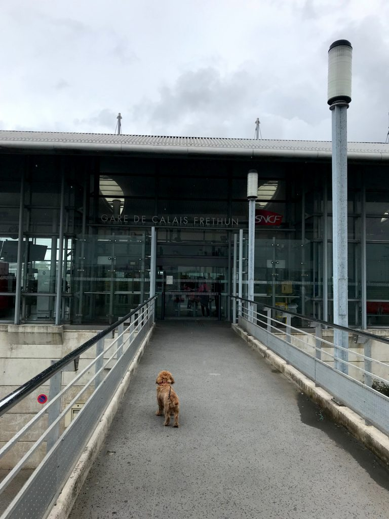 AMber looking towards the entrance of Calais station
