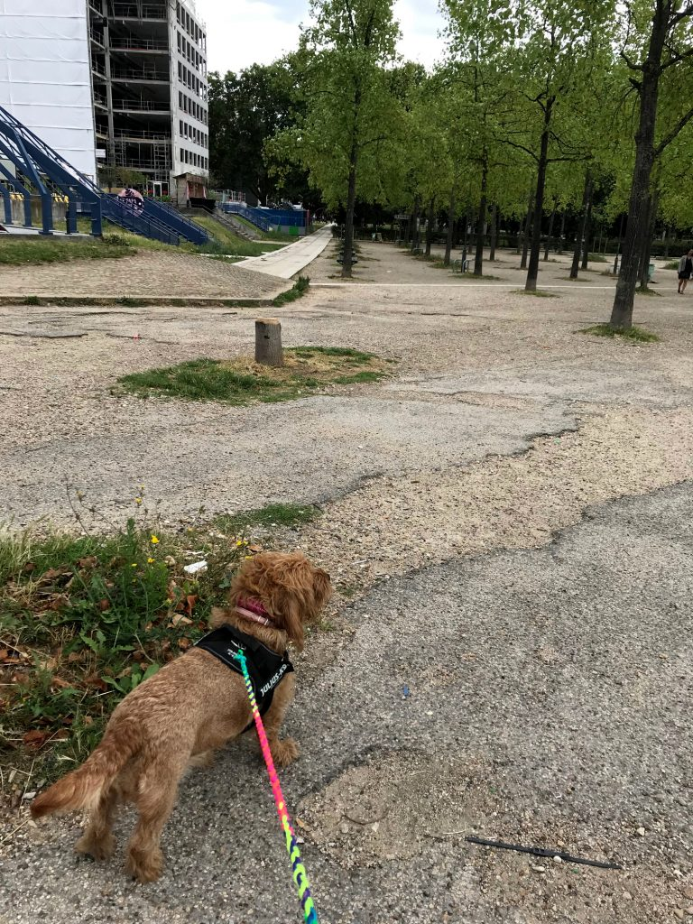 Amber in the ugly Parc de Bercy