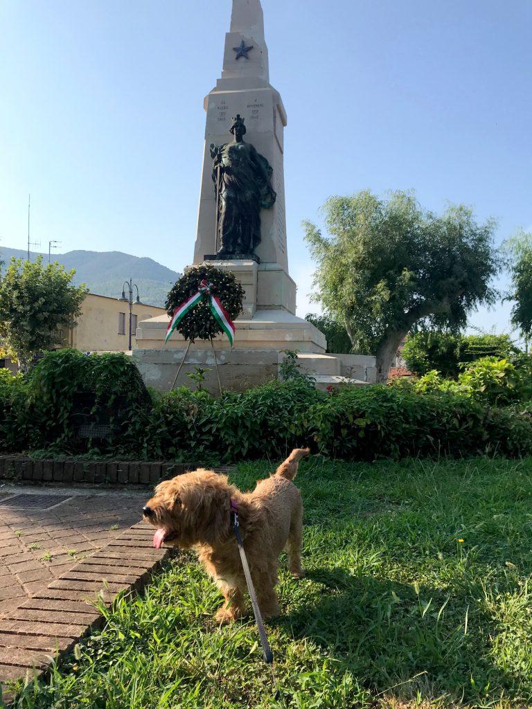 Amber in Sapri's park